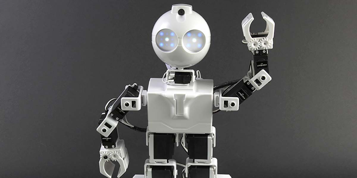Experimenting with Walking Robots — A Humanoid Platform