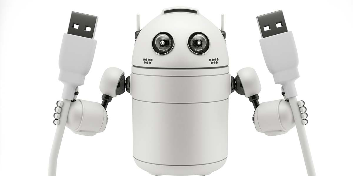 Controlling Robots Over the Internet